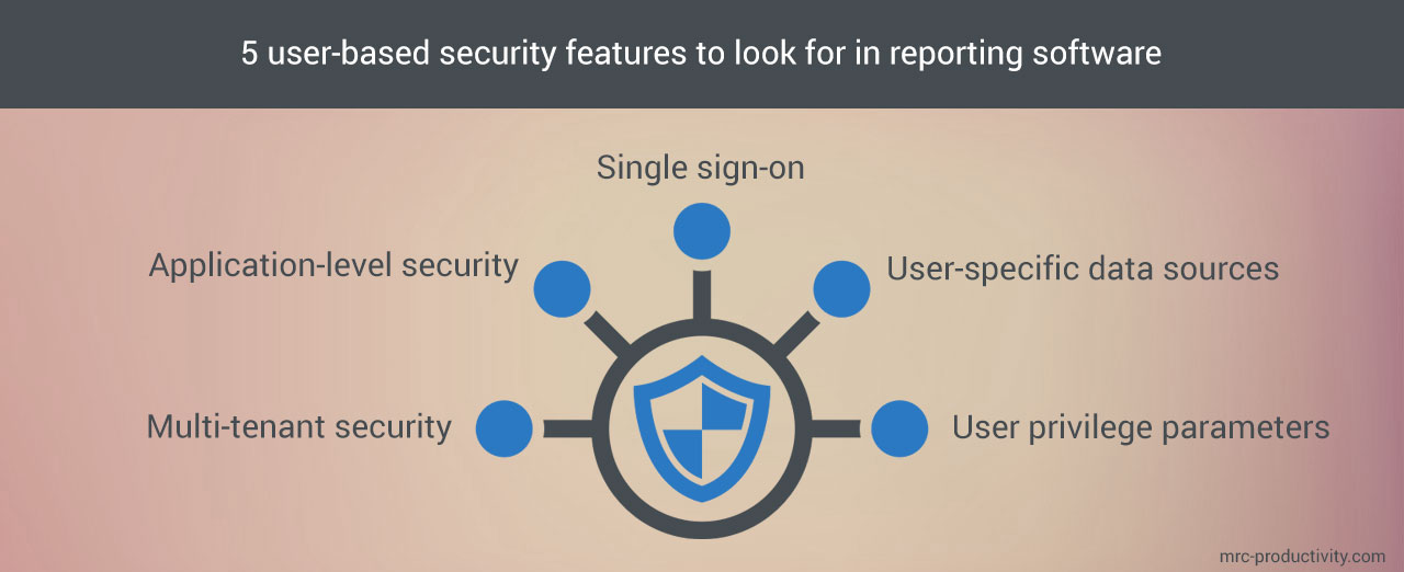 User-based security features found in reporting software