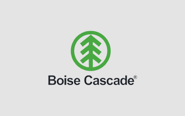 Boise Cascade develops a sophisticated Web-based reporting system with m-Power