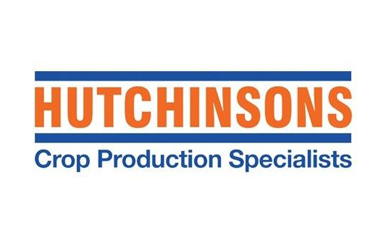 Hutchinsons delivers real-time ERP data to their key decision makers